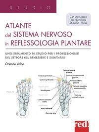Atlante del sistema nervoso in reflessologia plantare.