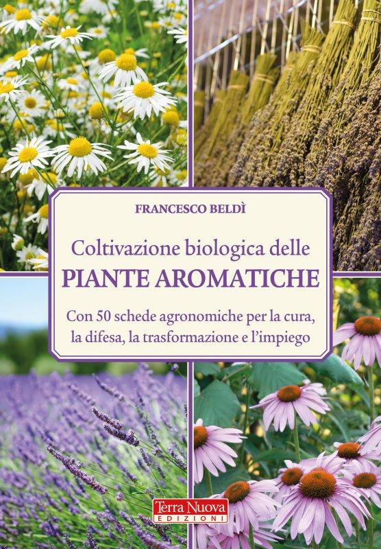 Coltivazione biologica delle piante aromatiche