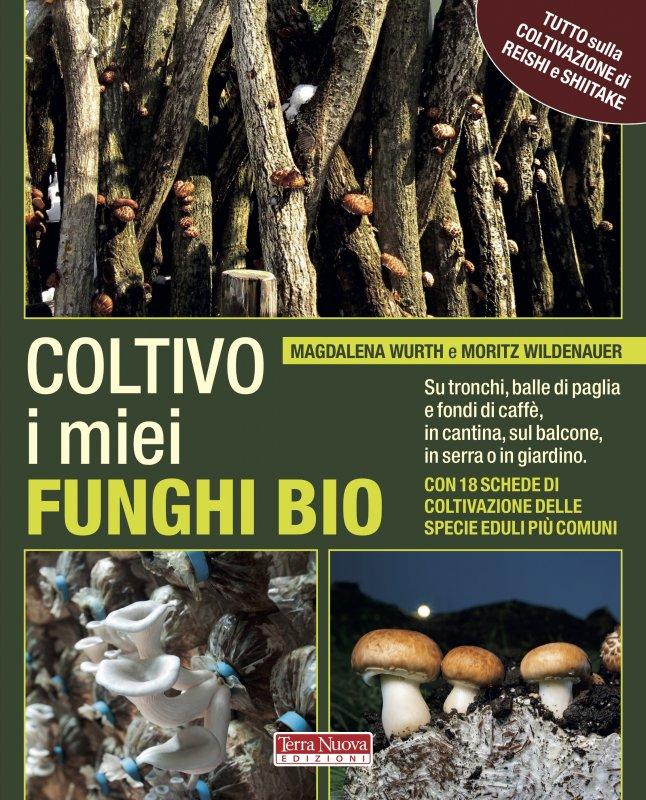 Coltivo i miei funghi bio