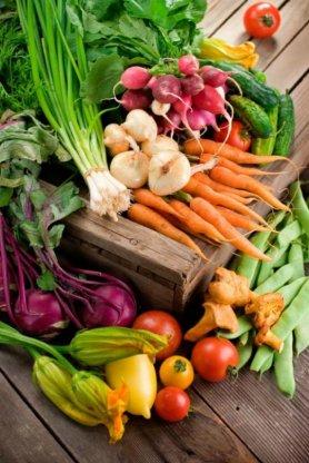 Corso Le stagioni in Cucina: l'Estate Energia Fuoco