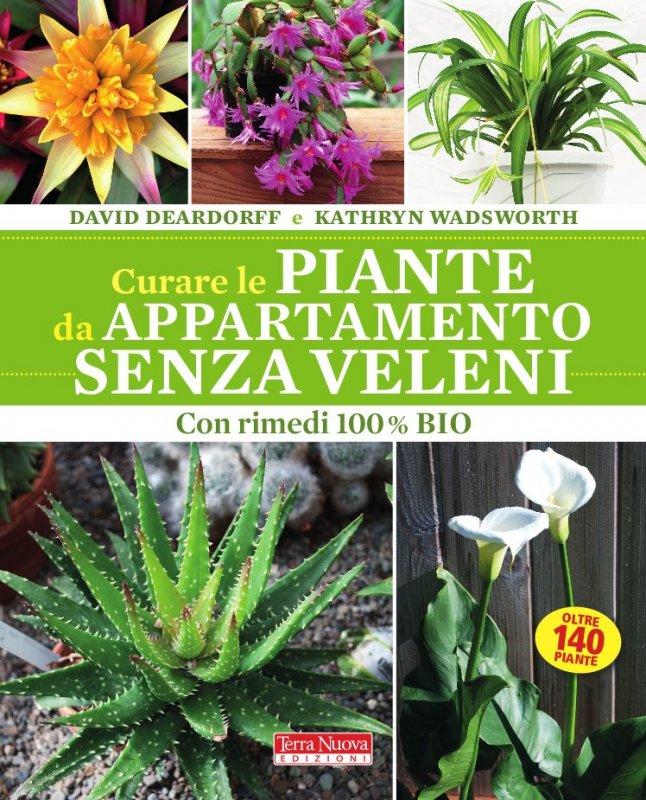 Curare le piante da appartamento senza veleni