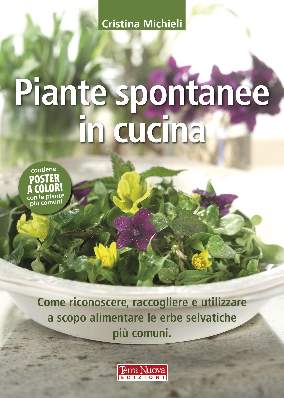 piante spontanee in cucina - Erbe Spontanee In Cucina